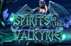 https://vulcan-platinum-win.com/spirits-of-the-valkyrie/